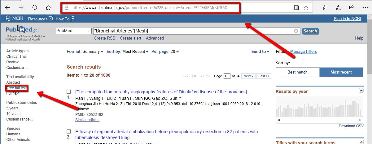 Screenshot PubMed search
